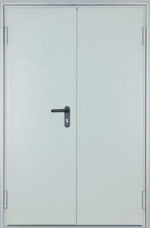 Дверь техническая СП512